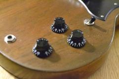 Volume for neck and bridge p/up, .master tone control